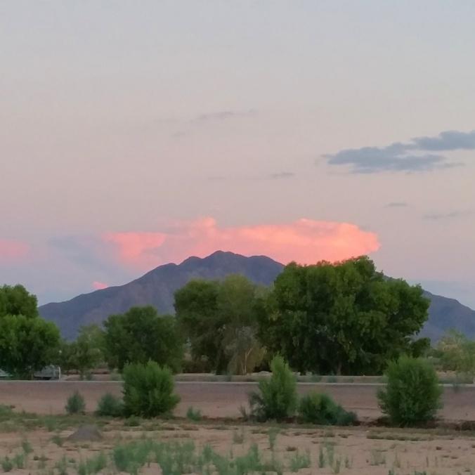 Goodnight, desert.